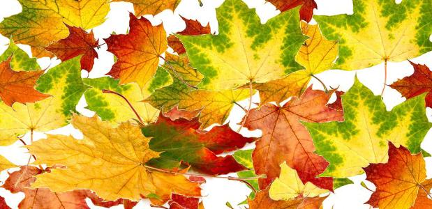 Herbstfest zum Weihrichkarzl